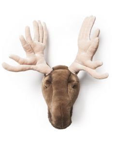 Wild & Soft - Trophy eland groot Alfred - Dierenkop