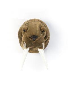 Wild & Soft - Trophy walrus Jacob - Dierenkop